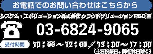 お電話でのお問い合わせはこちら システム・エボリューション株式会社 クラウドソリューションR&D室 03-6811-6670 受付時間 10:00-12:00 / 13:00-17:00(土日祝祭日・弊社休日除く)